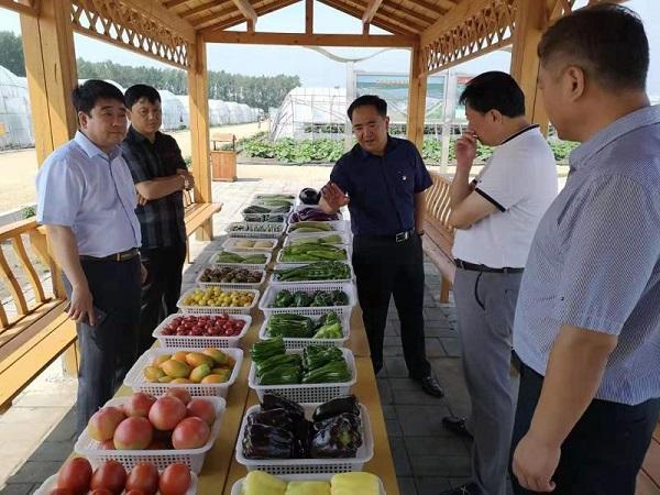 省工商联赴宾县调研民营企业参与乡村振兴战略实施情况